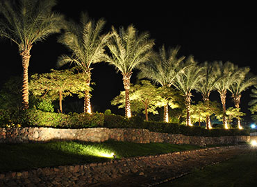 Landscape Lighting design and installation in Miami-dade